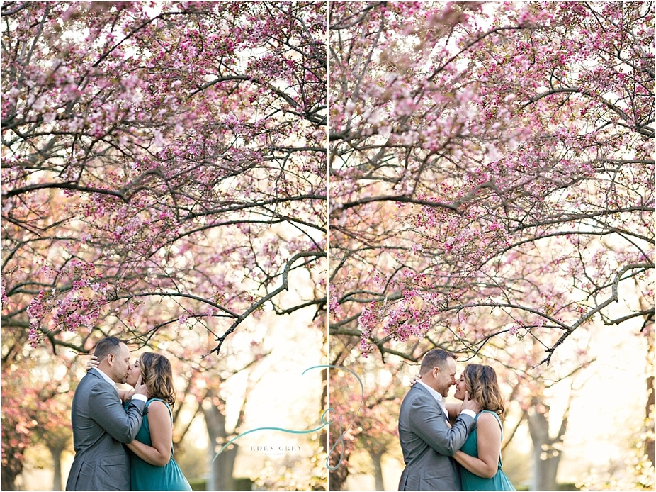Cherry Blossom engagement sessions